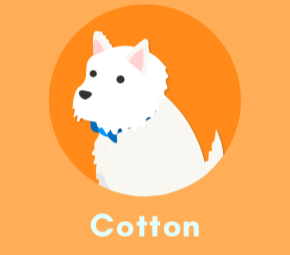 Cotton the dog